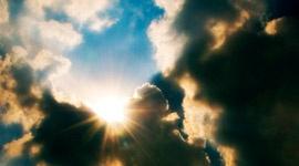 Influencia de la temperatura ambiental en las plantas