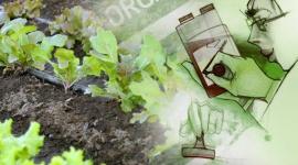 Productos ecológicos o respetuosos con el medio ambiente