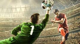 Competición CANNA FIFA
